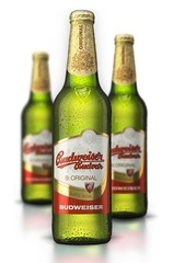 24 x Budweiser BUDVAR Beer Bottle Case